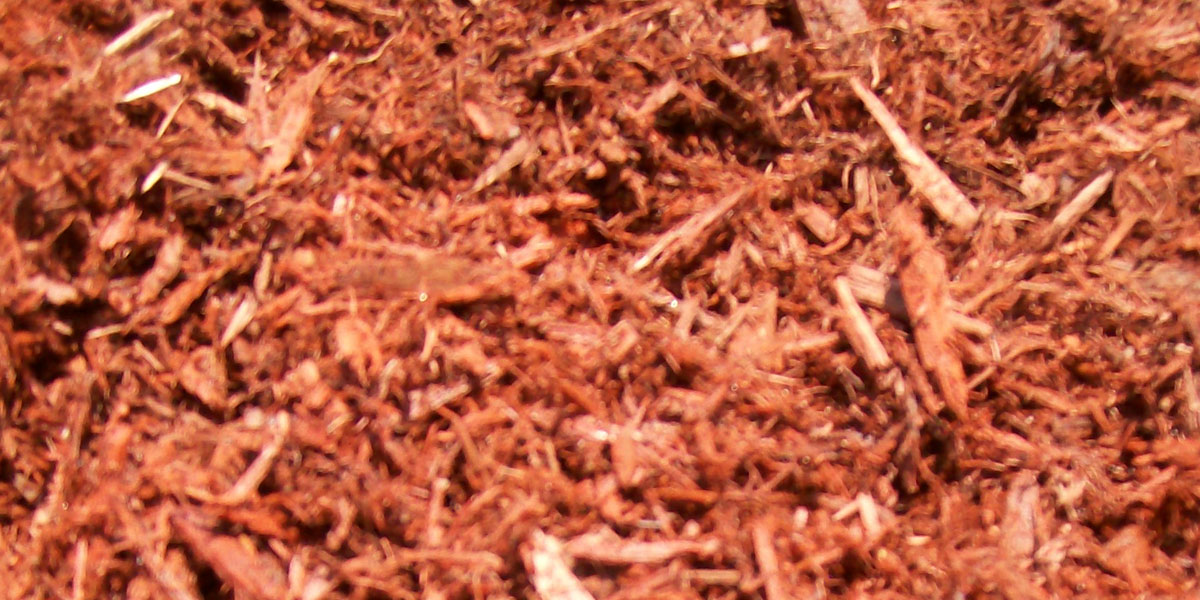 Red Cedar Mulch